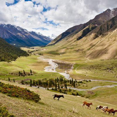 Viajar cultural y hacer trekking por las montañas en la Gran Ruta de la Seda